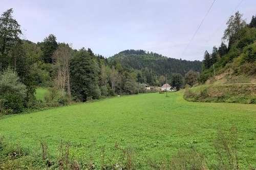 Landwirtschaftliche Flächen Griffen