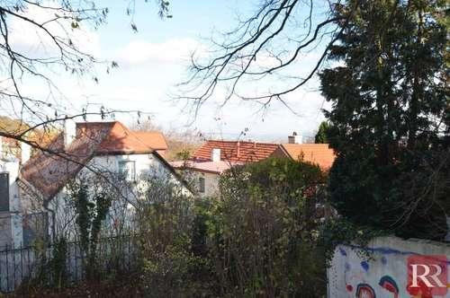 Seltene Gelegenheit in Gießhübl - großer Baugrund mit Altbestand