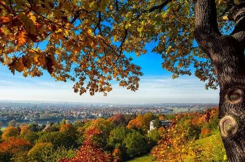 Herbstaktion: 3 Monate Hauptmietzinsfrei!!! Pärchenhit in Eberstein!