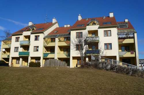 3 Zimmer - Terrasse - Erdgeschoß