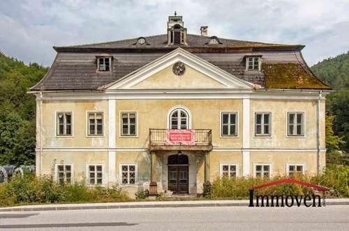 Exklusiver Landsitz – renovierungsbedürftiges-historisches Herrenhaus - auch als Gewerbeobjekt nutzbar
