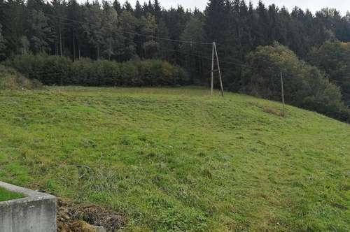 Sonniges Grundstück mit 746m² in Eidenberg