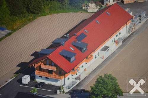 Lagerfläche - Lindenhalle in Wals