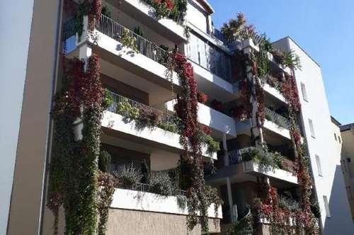 Wunderschöne  Wohnung im  Herzen von  Linz