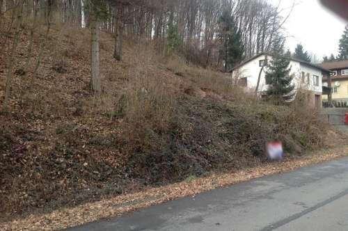 Günstiger Baugrund mit starker Hanglage in Hofstetten/Pielach/ Mainburg