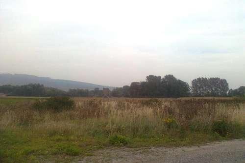 Gewerbebaugrund gute Lage nahe Umfahrung B1 in Prinzersdorf