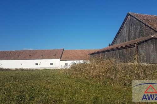 ACHTUNG NEUER PREIS! ANGEBOT MACHEN! Bauernhaus mit Innenhof und Nebengebäuden