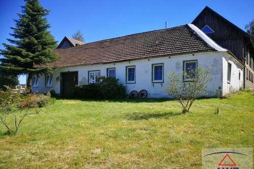 Bauernhaus mit 2 Wohneinheiten am Ortsrand