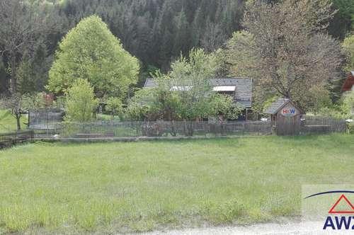 Nähe Waidhofen/Ybbs: Schönes ebenes Grundstück für Ihren Haustraum