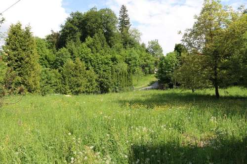 Großzügiges Grundstück mit Altbestand und Wald