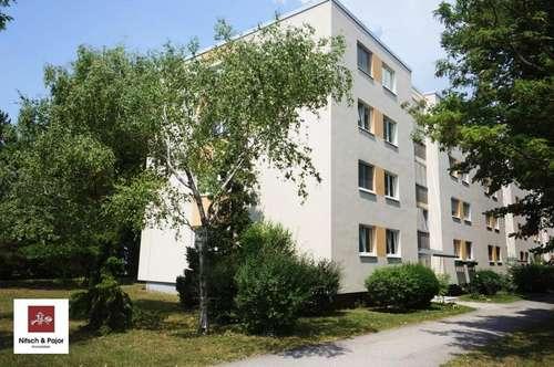 Familienfreundliche 4-Zimmerwohnung mit Grünblick - Südstadt