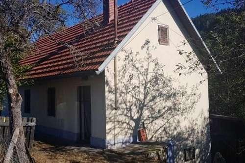 *** NEUER PREIS: Bastlerhaus in Gallizien !! ***