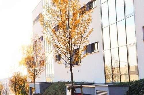 2 Zimmerwohnung mit Eigengarten am Froschberg!