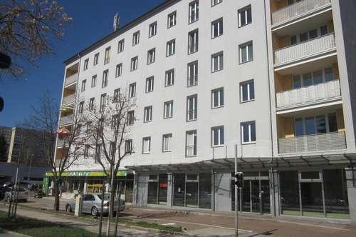 Neu renovierte großzügige Vierzimmerwohnung - Nähe Stadtzentrum