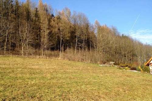 Grundstück in Bad Hall - Hehenberg