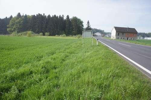 Gewerbegrundstück - Betriebsbauland bei Steyr