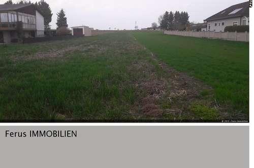 Grosses Baugrundstück in Zagersdorf!