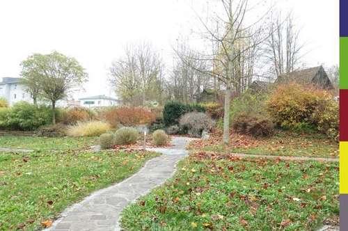 Wohnen und Arbeiten mit großem Garten