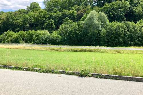 Schönes Baugrundstück in Grieskirchen