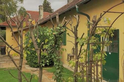 Miethaus mit Garten