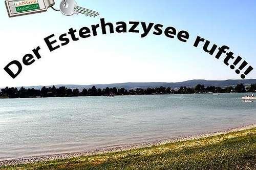 DER ESTERHAZYSEE RUFT!!!