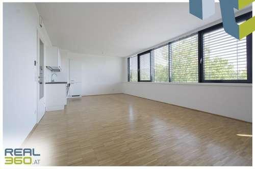 Helle 2-Zimmer mit riesiger Wohnküche ab sofort zu vermieten!