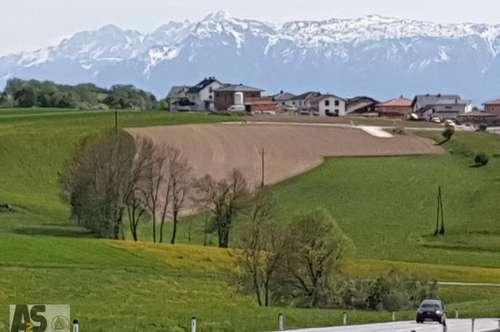 794m² herrlicher Baugrund nahe Wildshut in Tarsdorf, leichte W-Hanglage, sonnig, ruhig, aufgeschl.