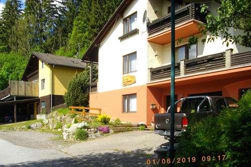 APARTMENTHAUS -Klein-PENSION oder großes Ferienhaus im Luftkurort Oberzeiring.