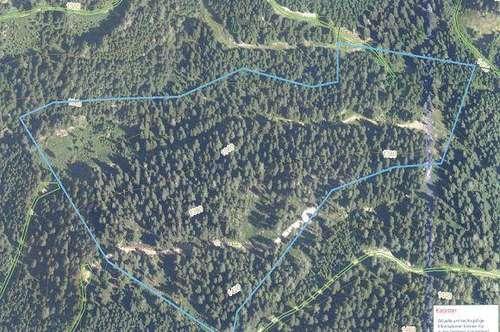 7,5 ha gut bestockter Wald - Nähe 8820 Neumarkt in der Steiermark