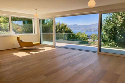 Sonniges Apartment mit tollem Traunseeblick