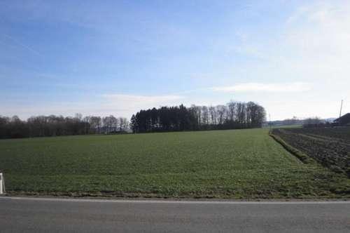 Landwirtschaftlich genutzte Grundfläche