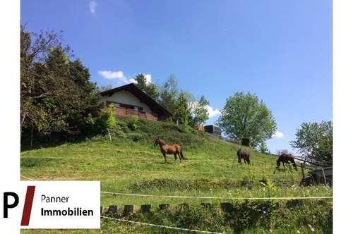 Landwirtschaft für Pferdehaltung mit traumhaftem Fernblick