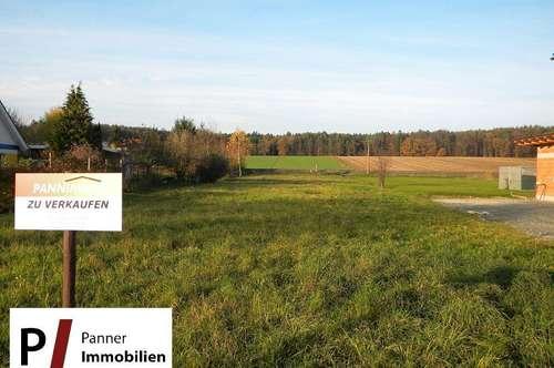 ***Preisreduktion! *** Baugrundstück in Übersbach