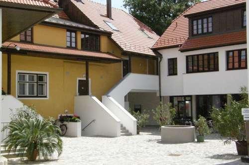 Rathausplatz 31