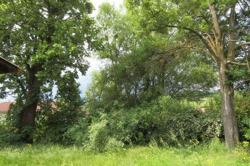Wunderschönes Baugrundstück im Wienerwald, ca. 593 m² - PROVISIONSFREI zu vergeben