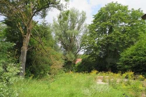 Idyllisches Baugrundstück im Wienerwald, ca. 856 m² - PROVISONSFREI