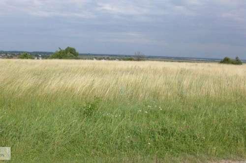 Rarität - Baugrundstück mit Panoramablick umgeben von Weinbergen