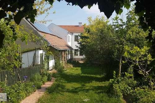 Verträumter Streckhof in Nickelsdorf