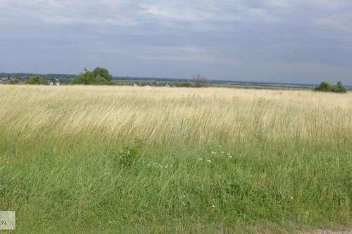 Nickelsdorf - Baugrundstück mit Panoramablick umgeben von Weinbergern
