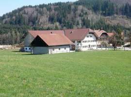 Haus kaufen in Neumarkt am Wallersee, Salzburg-Umgebung