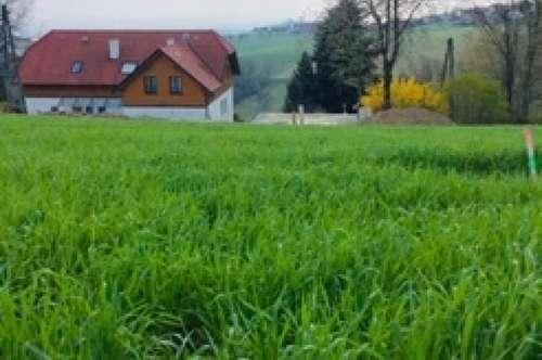 LICHTENBERG - sonniger Baugrund für Ihr NEUES ZUHAUSE