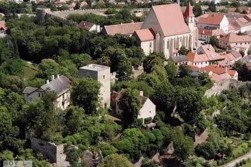 GRÜNDERZEITVILLA und BURGFRIED in uneinsehbarem Schlosspark nur 50 Minuten von Wien