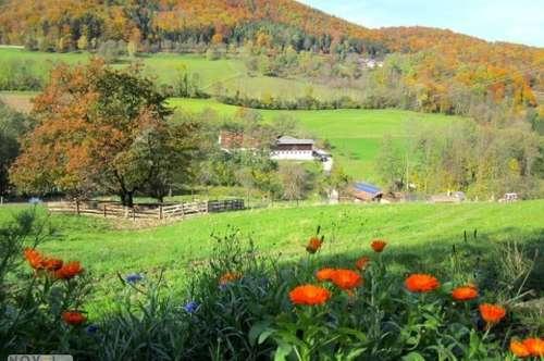 Bromberg - Ehemaliger Landgasthof in malerischer Umgebung