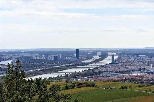 Neubau-Dachterrassenwohnung in 19. Bezirk Döbling