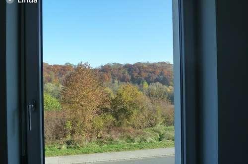 Traumwohnung, Traumbalkon, bereit für einen traumhaften Herbst?