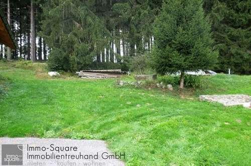 Ein Paradies nahe Linz, 5751 m2 Grundfläche mit Fischteich und Wohnhaus 190 m2 in 4040 Lichtenberg