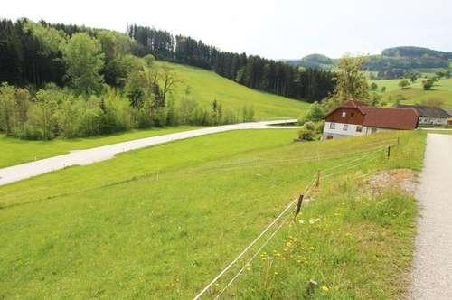 TOP Preis - Sichern Sie sich Ihr Hanggrundstück in Ternberg