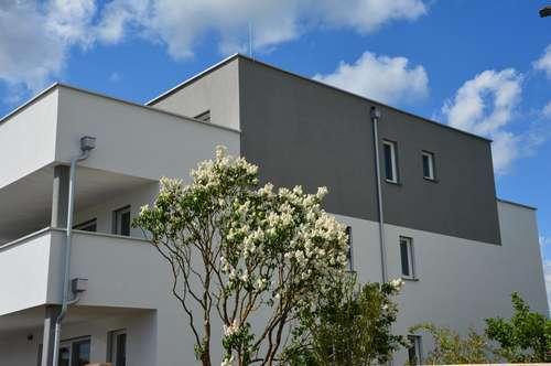 Neubau - Lichtdurchflutete Penthousewohnung in Seenähe mit 3 Zimmern und 2 Terrassen