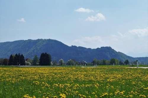 Wohnen Nähe Villach und Ossiacher See!