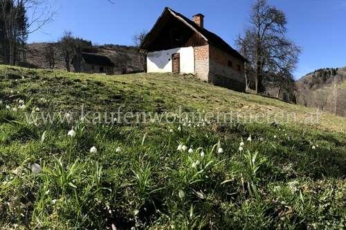 Ca. 9ha Wald und Wiese inkl. Wohngebäude mit weiteren Baumöglichkeiten.